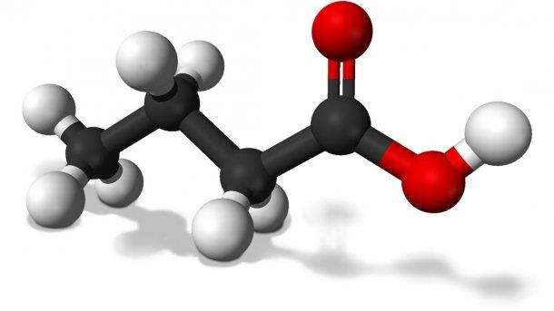 axit béo mạch ngắn và axit béo mạch trung bình với sức khỏe đường ruột heo con Butyric-acid_134450