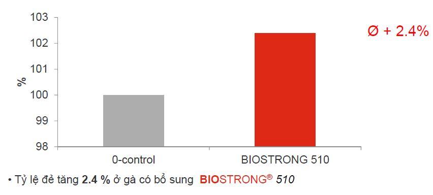 BIOSTRONG®510 là dòng sản phẩm thảo dược giành riêng cho gia cầm Biostrong%20510%20-%20Tang%20ty%20le%20de